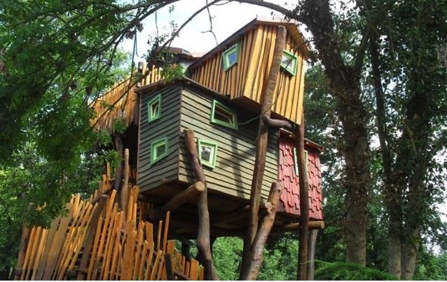 Baumhaus Kulturinsel Einsiedel