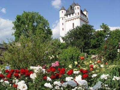 Burgturm in Eltville