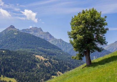 Kaernten-Berge
