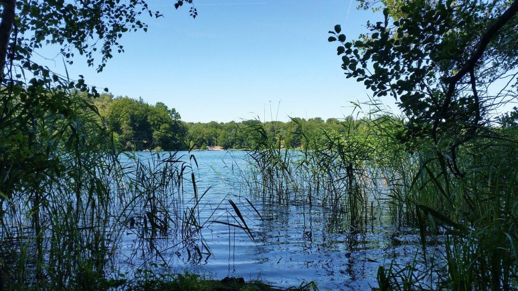 lake-1220287_1280