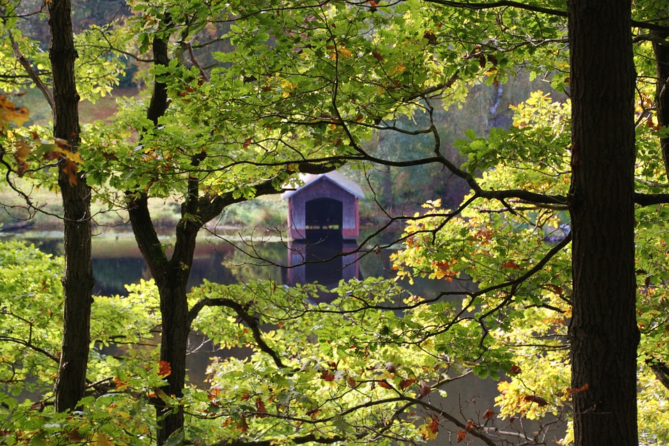 See Eifel